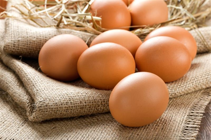 Manos symi fresh eggs